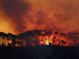 Cape fire: Homes damaged, 300 evacuated