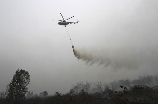 Indonesia expects to control haze from forest fires within 30 days
